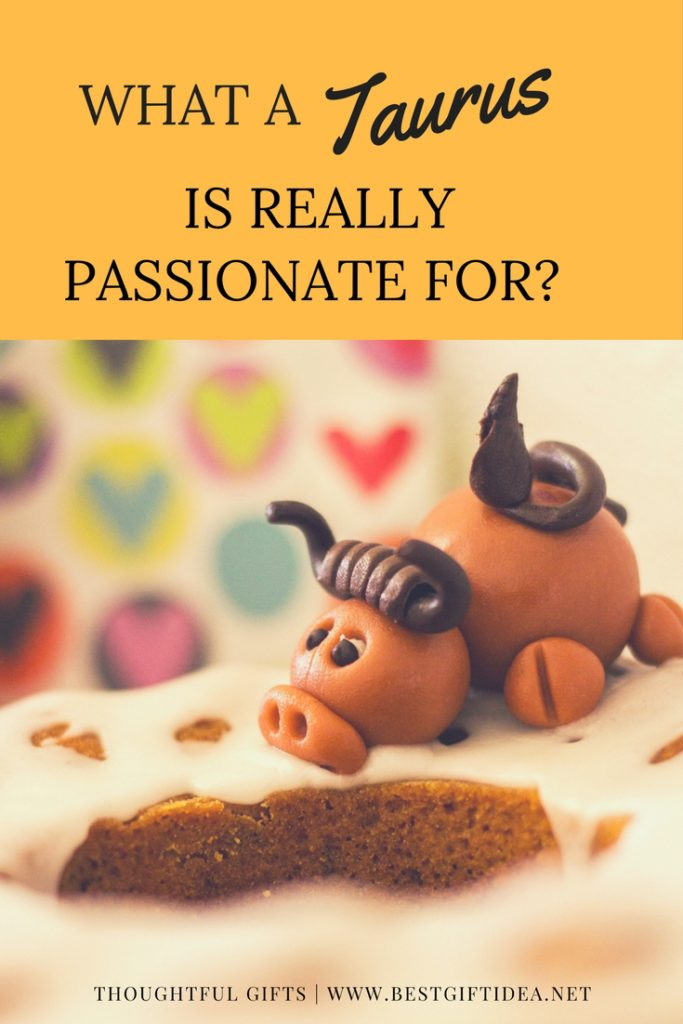 WHAT A TAURUS IS REALLY PASSIONATE FOR