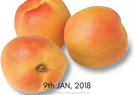 9th january celebration